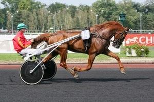 le-cheval-trotteur