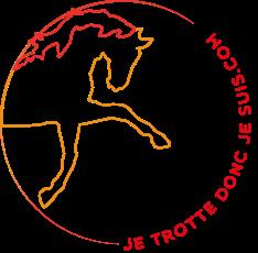 Logo JTDJS rond blousonss